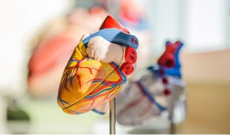 Doenças cardiovasculares - Quais os fatores de risco