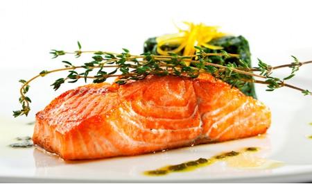 salmão um tesouro no mar