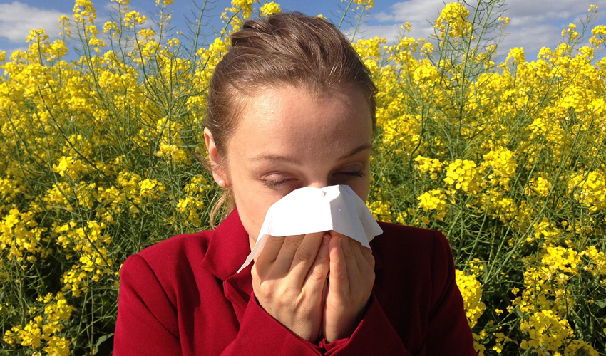 5 opções para aliviar sintomas de alergia