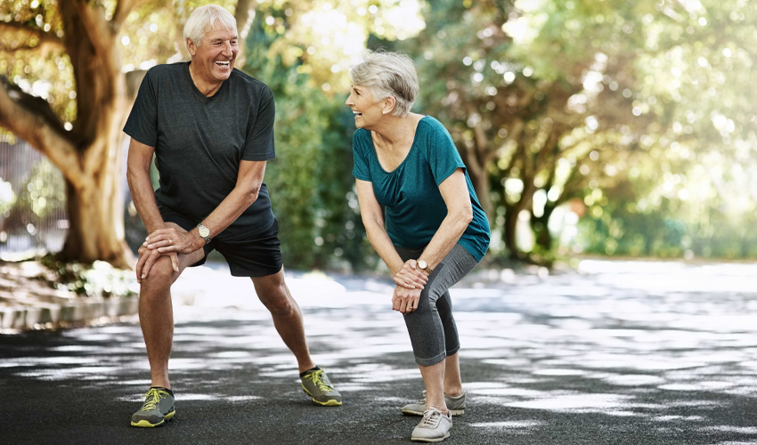 Tudo sobre a Osteoporose - Saiba como se prevenir!